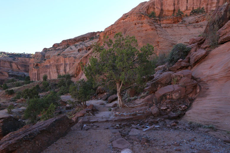 Canyon de Chelly - White House Ruins Trail