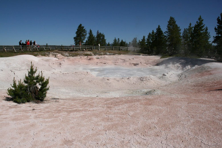 Yellowstone NP, Lower Geyser Basin- Fountain Paint Pot