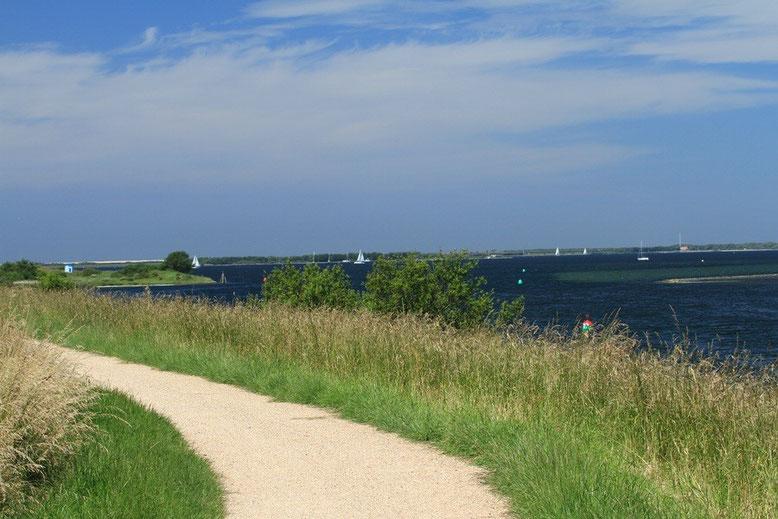 Deich Brouwershaven, Langendijk