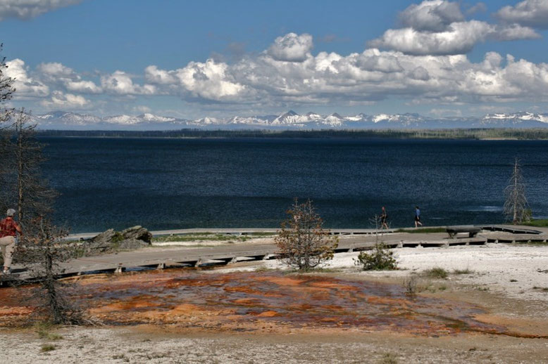 Yellowstone NP, West Thumb Geyser Basin