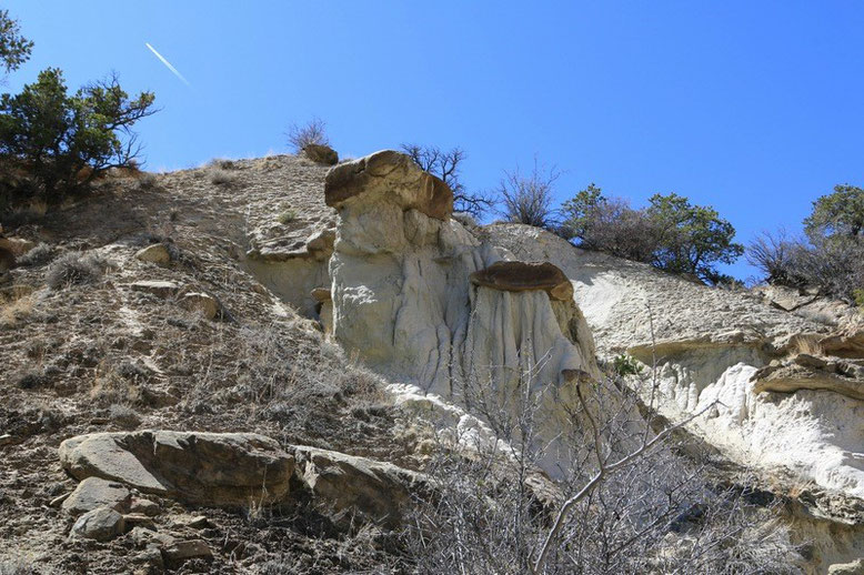 White Cliffs bei Gallup
