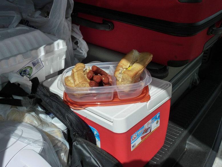 Picknick windgeschützt unter der Kofferraumklappe.