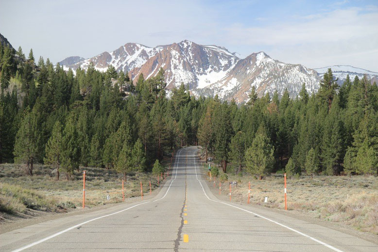 June Lake Road