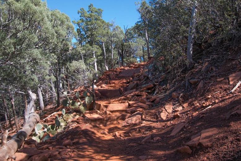 Sedona - Devils Bridge Trail