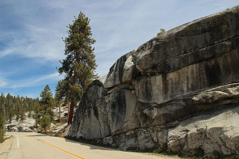 auf der Fahrt zum Kings Canyon