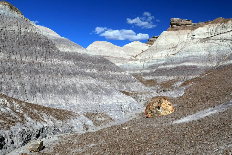 Petrified Forest - Painted Desert, Blue Mesa Trail