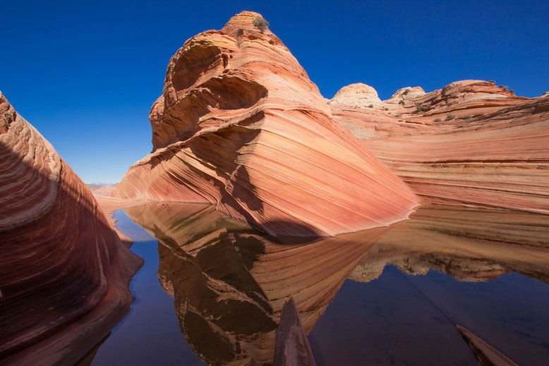 The Wave, Coyote Buttes North, Arizona