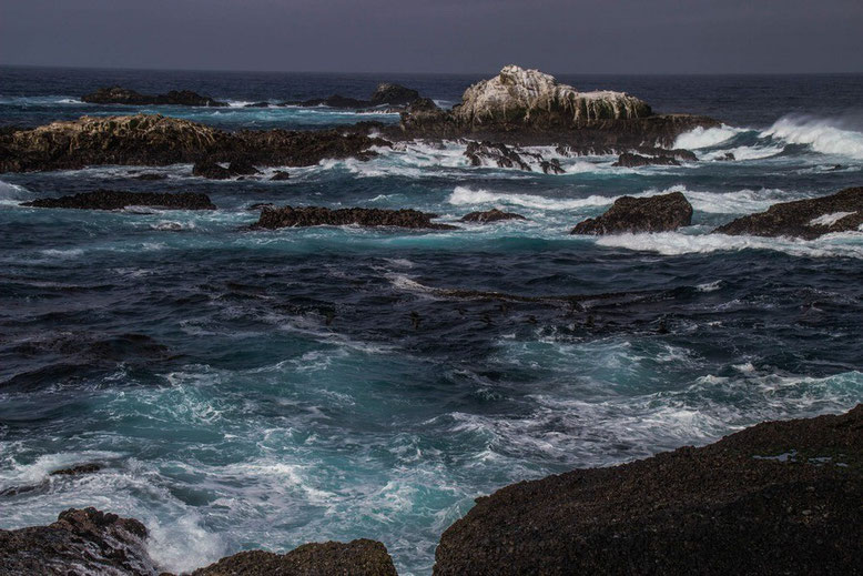 Point Lobos State Reserve, Highway 1