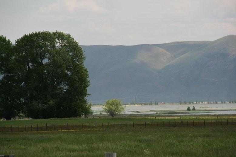 Von der I 84 über die US 89 zum Teton NP -  Yellowstone NP