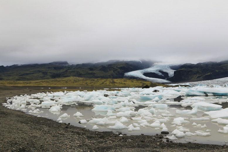 Fjallsárlón Gletscher Lagune