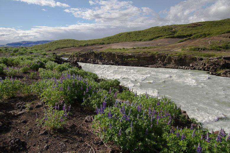 Der Wasserfall Þjófafoss ist Teil des Flusses Þjórsá