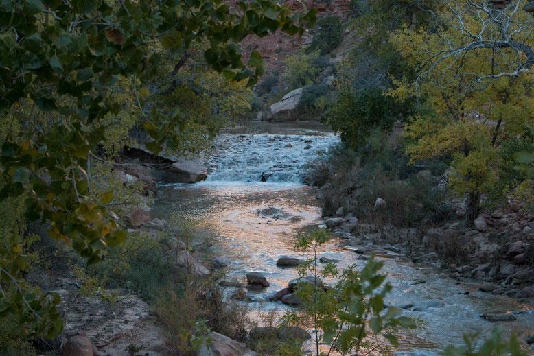 Zion NP - Pa'rus Trail