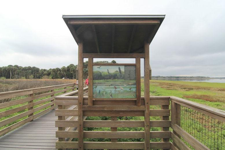 Myakka River State Park - Birdwalk
