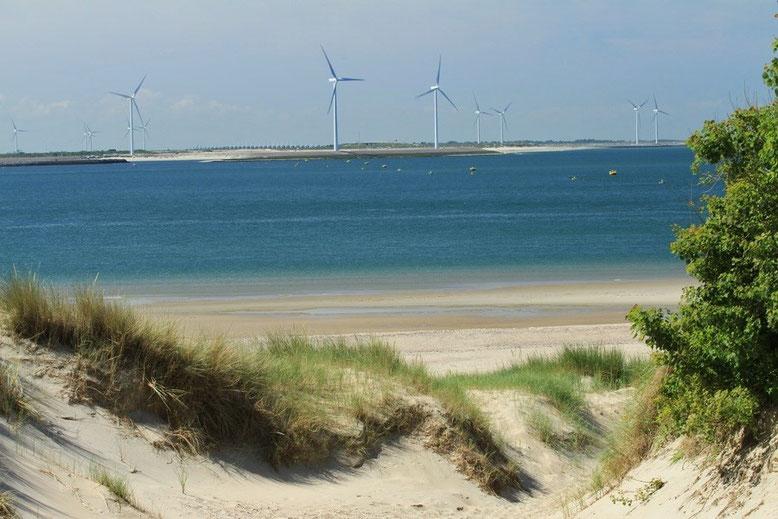 Voordelta Insel Schouwen