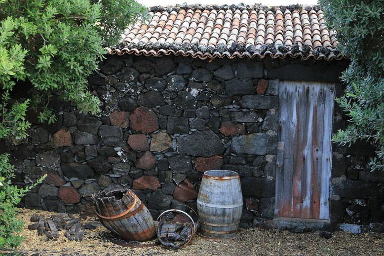 Rota do Vinho, Pico, Azoren