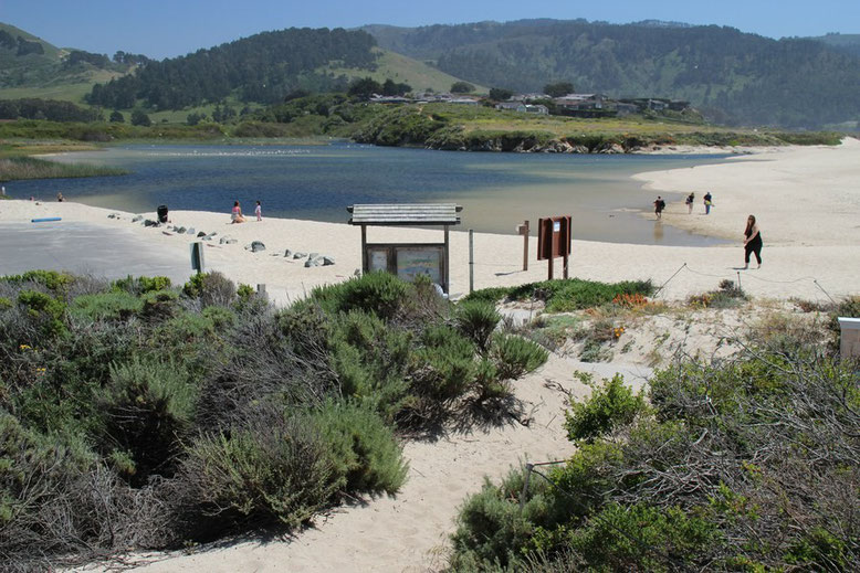 The Carmel River Lagoon and Wetlands Natural Preserve