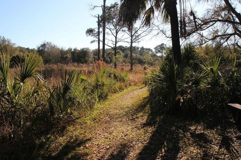Crystal River Preserve State Park