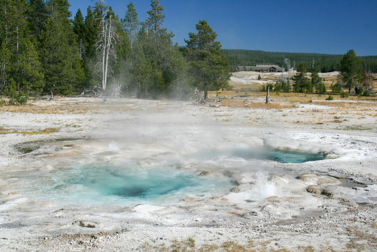 Yellowstone, Old Faithful Area
