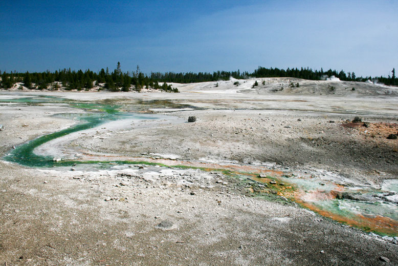 Yellowstone, Norris Geyser Basin - Porcelain Basin