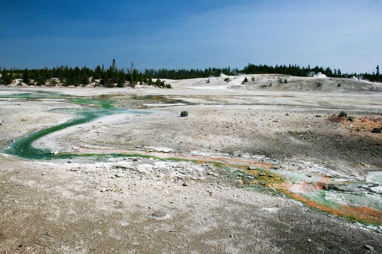 Yellowstone, Norris Geyser Basin - Porcelain Basin