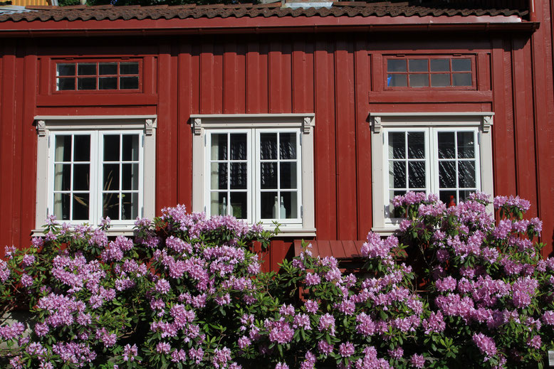 Reisebericht Norwegen, Wohnmobil, Trondheim