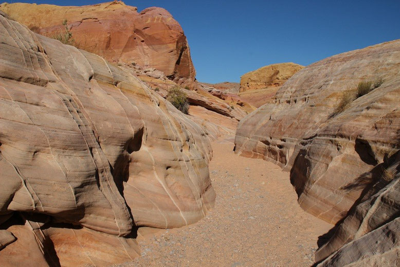 Pink Canyon, Valley of Fire - N36 28 48.0 W114 31 34.0