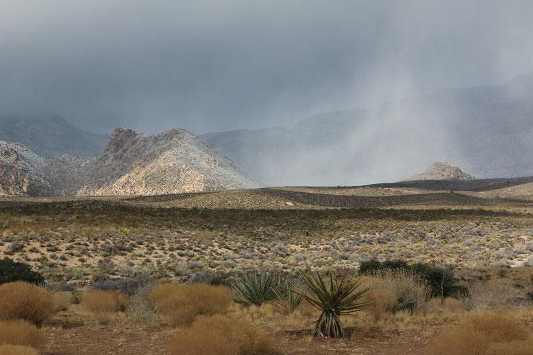Rund um Las Vegas, Red Rock Canyon
