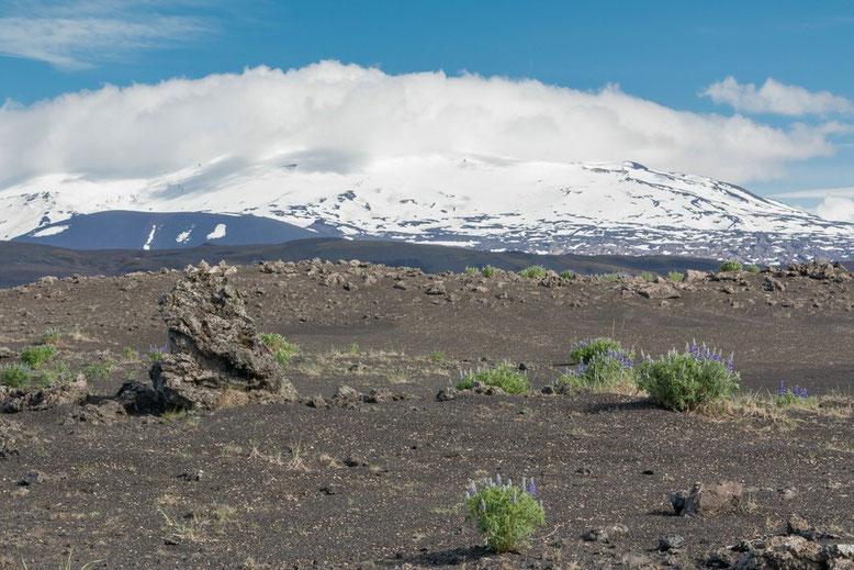 Merkurhraun Lavafeldern am Þjófafoss