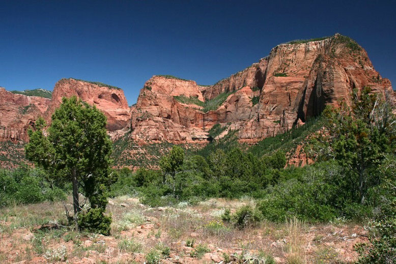 Kolob Canyon