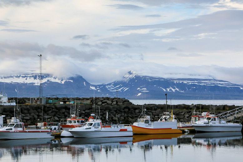 Fahrt über Westfjorde Islands- Súðavík