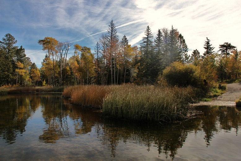 Hell's Backbone Road, Posey Lake