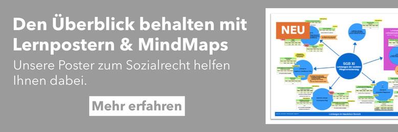 Mind Maps zum Sozialrecht, BTHG und Neue Eingliederungshilfe