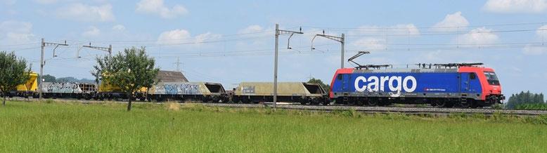 Bahnfoto Schweiz SBB Re 484 P.Trippi