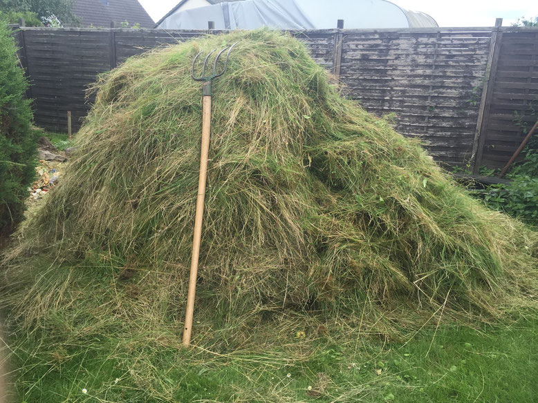 31.08.2015: Das Ergebnis von ca. 4h sensen, etwa 1.5 Fuder Gras