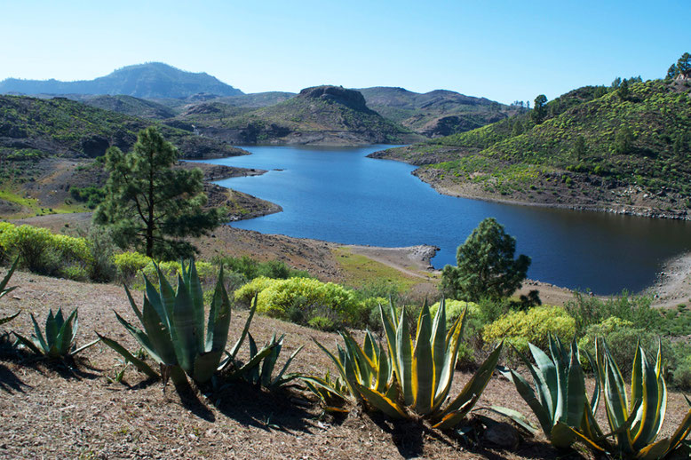 Most Beautiful Lakes in Europe - 10 Astonishing Lakes You Must See in Europe - Presa de las Ninas, Gran Canaria, Spain
