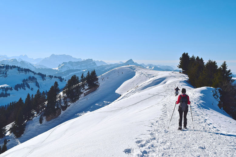 How is Life in Switzerland - Winter Activities