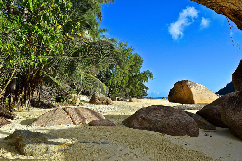 Best Place to Stay in the Seychelles - A Part of the Beach Anse Boudin