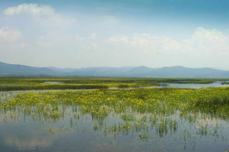 Slovenia Hidden Gems - Lake Cerknica