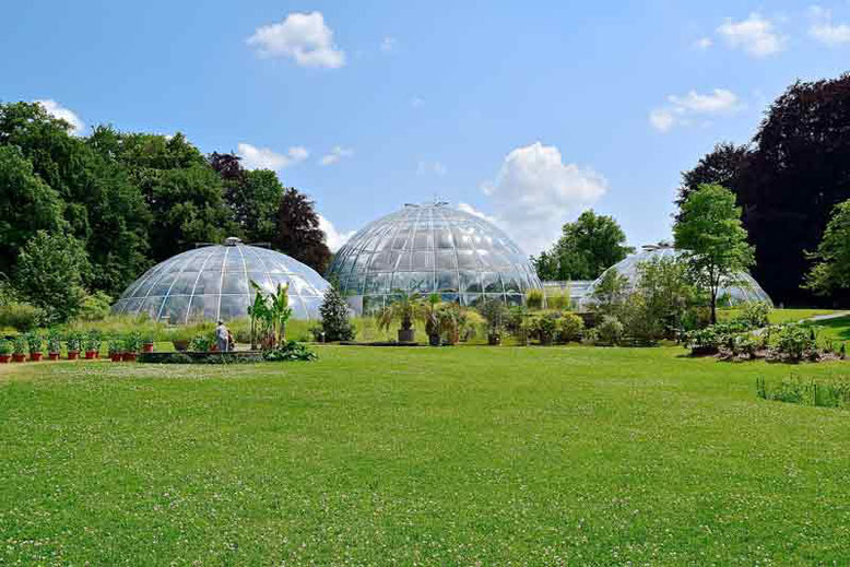 Unique and Cool Things to Do in Zurich, Switzerland - Botanical Garden