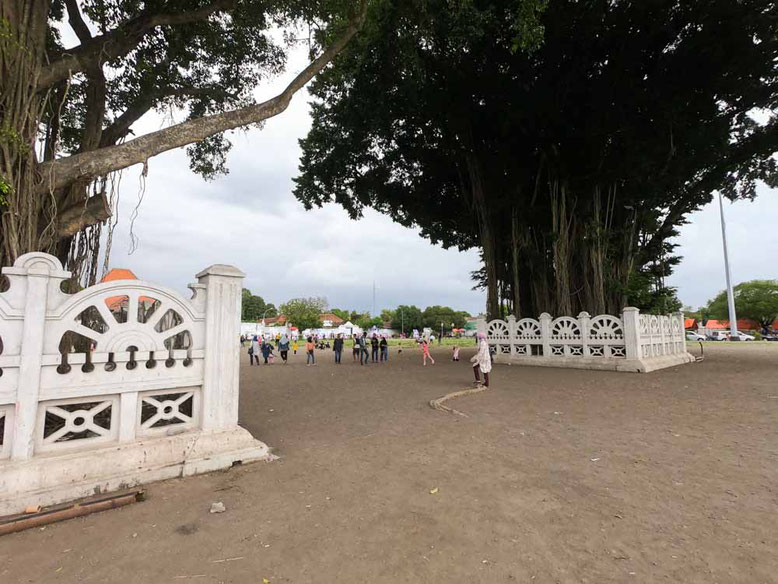 Yogyakarta - Alun Alun Selatan