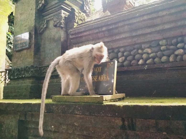 Sicurezza a Bali