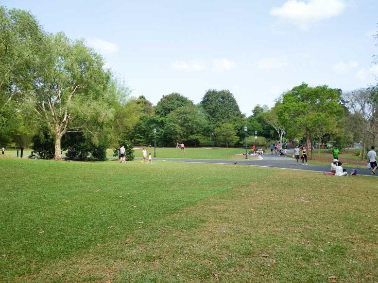 Singapore con i bambini. Singapore Botanic Gardens