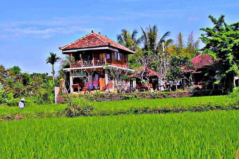 I migliori Ostelli a Bali. White Villa Hostel Ubud