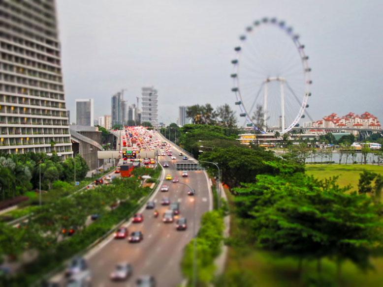 Cosa fare con i bambini a Singapore