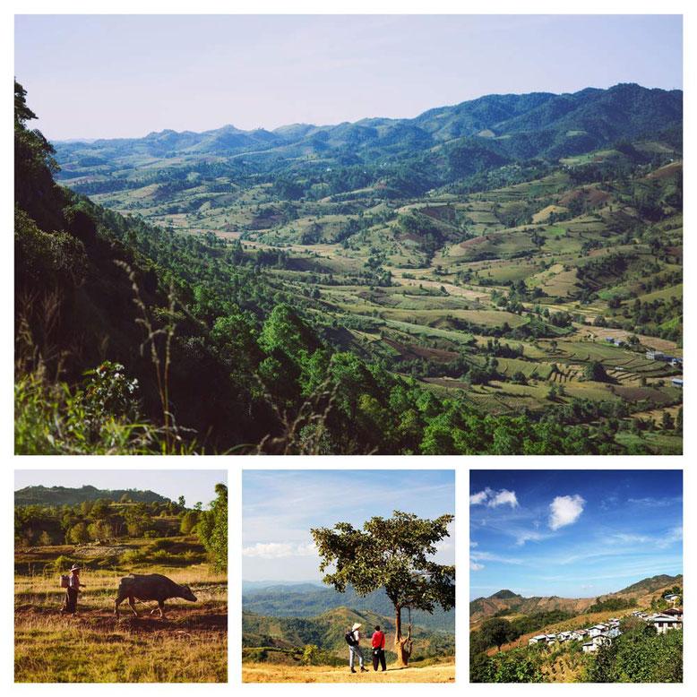 Viaggio di gruppo in Birmania. Collage 4