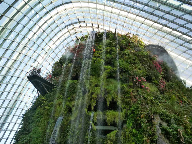 Singapore Marina Bay. Cloud Forest
