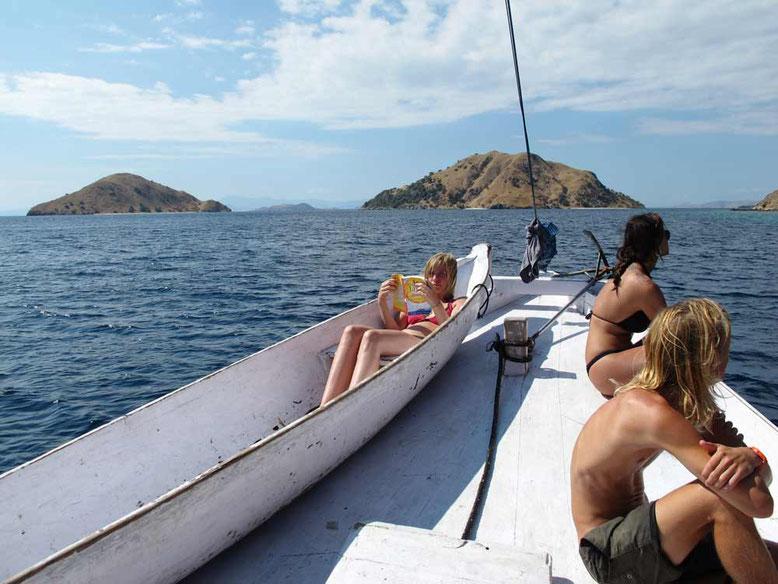 Komodo: l'isola dei draghi. Crociera Komodo