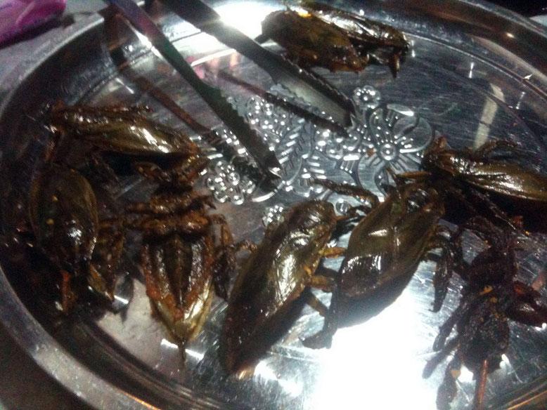 La mangiatrice di scarafaggi. Insetti fritti