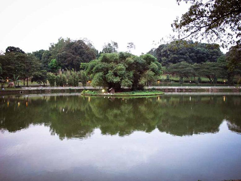Kuala Lumpur: cosa vedere in 3 giorni. Lake Gardens