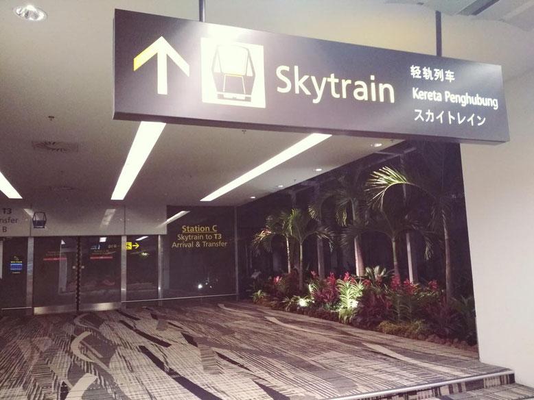 Aeroporto di Singapore: 6 cose da fare Gratis. Skytrain